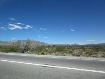 More desert